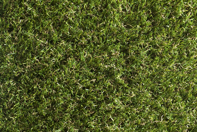 Meadow Luxury Artificial Grass
