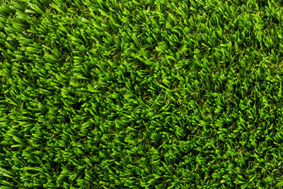 Apple Milford Luxury Artificial Grass